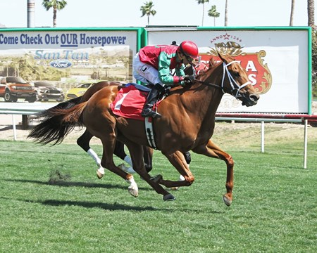 Red Zeus thunders home in the Dwight D. Patterson Handicap in Turf Paradise.