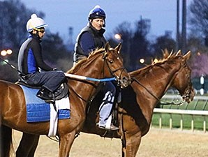 Gun Runner at Churchill Downs April 4.