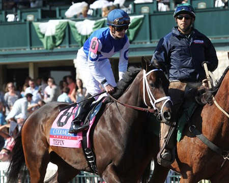 TEPIN The Coolmore Jenny Wiley Gr I - 28th Running Keeneland Race Course     Lexington, Kentucky April 16, 2016    Race #10 Purse $350,000 1-1/16 Miles-Turf   , Owner Mark E. Casse, Trainer Julien Leparoux, Jockey Itsonlyactingdad (2nd) Illuminant (3rd) $2.80 $2.40 $2.10 Order of Finish - 8, 6, 7, 3 Please Give Photo Credit To:  / Coady Photography