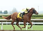 Ward Again Wins First 2YO Race at Keeneland
