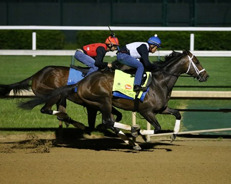 Dazzling Gem works at Churchill Downs April 30, 2016