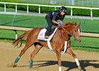 Weep No More trains toward Kentucky Oaks