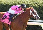 Catch a Glimpse is set for her Keeneland return