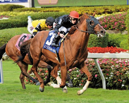 Imagining wins the Grade III Pan American Stakes at Gulfstream Park on March 28, 2015.  Photo by: Coglianese Photo