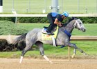 Mohaymen works at Churchill Downs April 20
