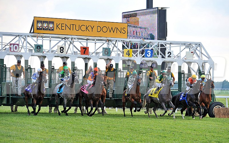 Start of the 2014 Dueling Grounds Derby, at Kentucky Downs in Franklin, Kentucky.