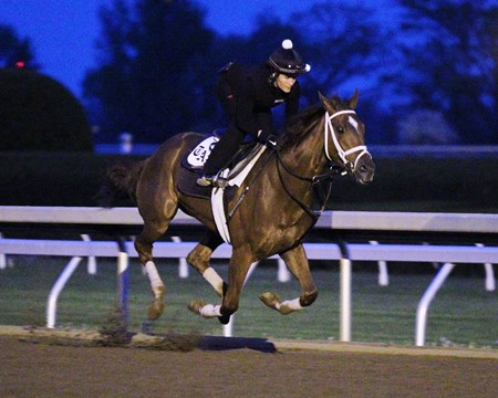 Curalina - Morning Workout - KEE - 042116 Trainer: Todd A. Pletcher Owner: Eclipse Thoroughbred Partners Breeder: CASA Farms I, LLC