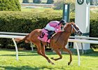 Catch a Glimpse wins the Appalachian (gr. IIIT)