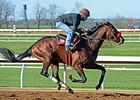 American Dubai Works at Keeneland