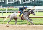 Lani works at Churchill Downs April 27