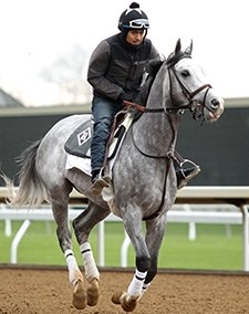 Cherry Wine - Keeneland, April 7, 2016.