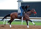 Nyquist jogs at Keeneland April 11