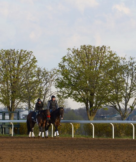 Nyquist at Keeneland on April 14, 2016.