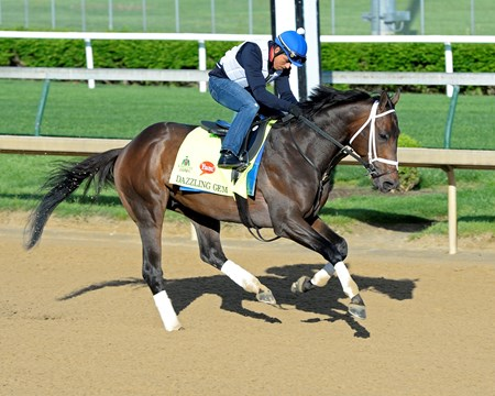 Dazzling Gem on track at Churchill Downs in Louisville, Ky., on April 29, 2016.