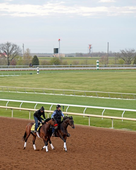 Shown before work with asst trainer Jack Sisteson on Satire. Nyquist with Jonny Garcia works 5 furlongs in 1:02 3/5.