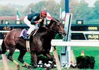 Inside Information is all alone at the wire in the 1995 Breeders' Cup Distaff at Belmont Park