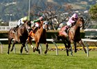 Alert Bay (right) wins the San Francisco Mile Stakes April 30