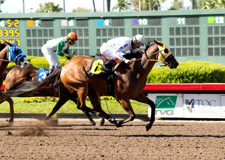 Matson Racing's San Onofre and jockey Edwin Maldonado, right, outleg Wild Dude (Kent Desormeaux), inside, and Raised a Secert (Agapito Delgadillo), left, to win the Grade III, $100,000 Los Angeles Stakes, Saturday, April 16, 2017 at Los Alamitos Race Course, Cypress CA. © BENOIT PHOTO