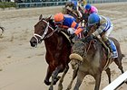 Outwork (left) gets in front of Trojan Nation at the wire to win the Wood Memorial.
