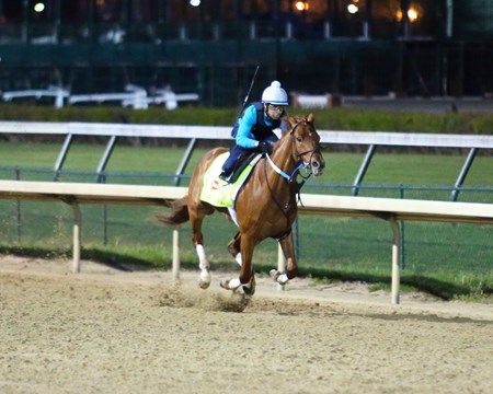 Gun Runner exercises at Churchill Downs April 11, 2016.