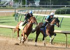 Gun Runner works at Churchill Downs April 25