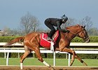 Catch a Glimpse, Curalina Breeze at Keeneland