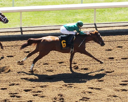 EAGLE The Ben Ali Gr III - 86th Running Keeneland Race Course     Lexington, Kentucky April 16, 2016    Race #07 Purse $200,000 1-1/8 Miles  1:48.57 W.S. Farish , Owner Neil J. Howard, Trainer  Noble Bird (2nd) Breaking Lucky (3rd) $6.00 $3.00 $2.40 Order of Finish - 6, 5, 1, 4 Please Give Photo Credit To:  / Coady Photography