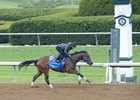 Cathryn Sophia Swift in Work at Keeneland