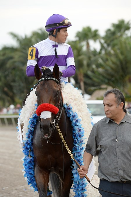 Nyquist wins the 2016 Florida Derby