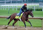 Brody's Cause Retired to Spendthrift
