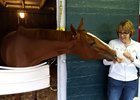 Multiple grade 1 winner I'm a Chatterbox and Carolyn Gray
