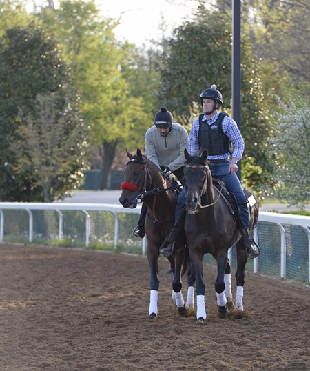 Nyquist jogs two laps around the Keeneland main track April 19