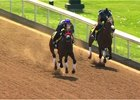 Nyquist KY Derby NM video