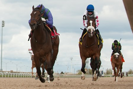 Jockey Luis Contreras guides #1 Gamble's Ghost to victory in the $150,000 dollar Grade II Selene Stakes at Woodbine Racetrack.Gamble's Ghost is owned by Ivan Dalos and trained by Josie Carroll.
