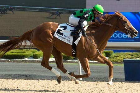 Cactus Kris wins Hendrie Stakes at Woodbine