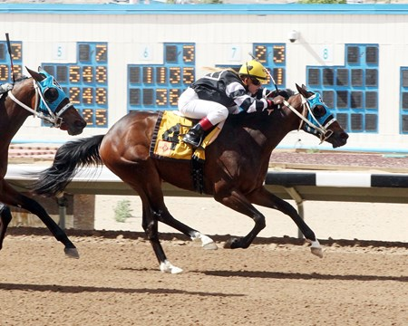 You've Been Duped wins the 2014 Totah Stakes.