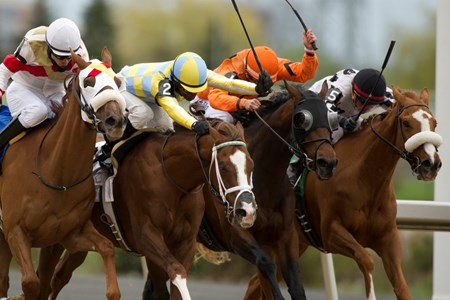 Jockey Gary Boulanger skips thru on the inside rail (white silks) aboard Thatlookonyerface to outduel (R-L) #1 Bear'sway,#2 Greatest Game and #3 Dragon Bay, to capture the 2016 Marine Stakes at Woodbine Racetrack.Thatlookonyerface is owned by Dominion Bloodstock and Barrym Butzer and trained by Dave Cotey.