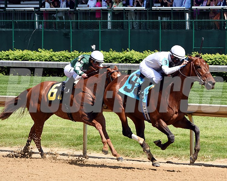 Majestic Harbor wins the 2016 Alysheba Stakes.