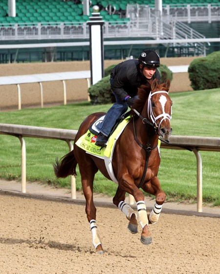 Oscar Nominated on the track at Churchill Downs on May 5, 2016.