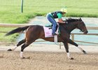 Carina Mia works Monday at Churchill Downs.