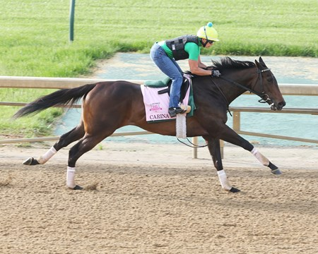 Carina Mia works at Churchill Downs May 2, 2016