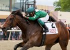 Preakness: Abiding Star Needs Quarantine Lift