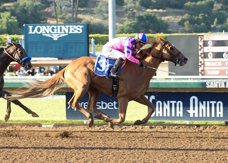 Second Summer and jockey Mario Gutierrez win the Grade II $200,000 Californian Stakes Sunday, May 22, 2016 at Santa Anita Park, Arcadia CA.