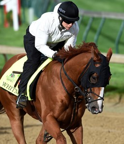 Whitmore gets morning exercise May 5, 2016 at Churchill Downs in Louisville, K.Y.
