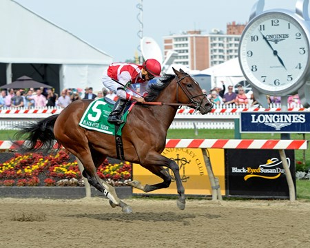 Go Maggie Go with Luis Saez wins the Black-Eyed Susan Stakes (gr. II) Preakness week at Pimlico in Baltimore, Md., on May 20, 2016.