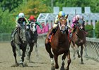 Noble Bird Returns to Form in Pimlico Special