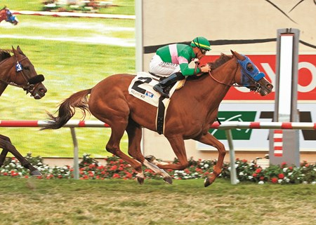 Cozi Rosie and jockey Garrett Gomez, right, outrun Wasted Tears (David Flores), left, to win the Grade II, $250,000 John C. Mabee Stakes, Sunday, August 14, 2011 at Del Mar Thoroughbred Club, Del Mar CA.
