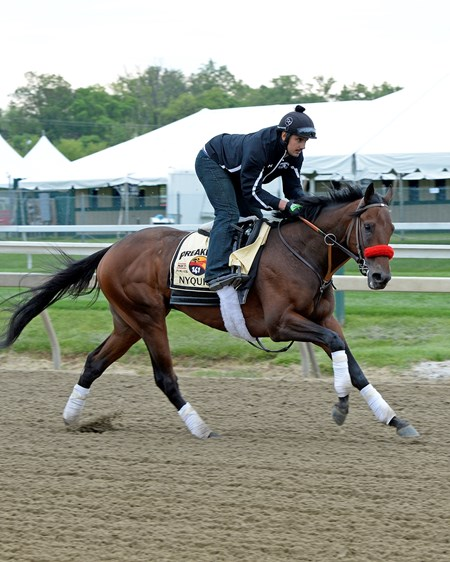 Nyquist with Jonny Garcia Preakness week at Pimlico in Baltimore, Md., on May 19, 2016.