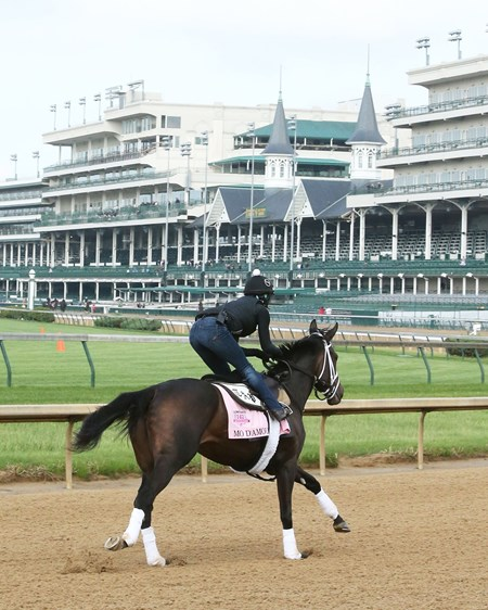 Mo d'Amour - Churchill Downs, May 2, 2016