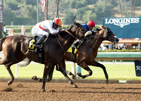 Avanti Bello and jockey Rafael Bejarano win the $150,000 Tiznow Stakes Saturday, May 28, 2016 at Santa Anita Park, Arcadia CA.